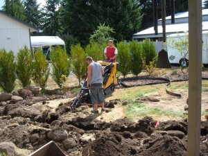 landscaping 2010
