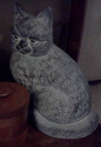 Cat with attitude