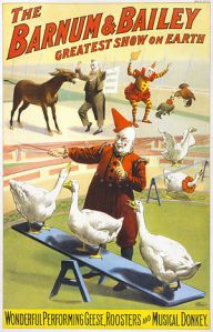 300px-Barnum_&_Bailey_clowns_and_geese2