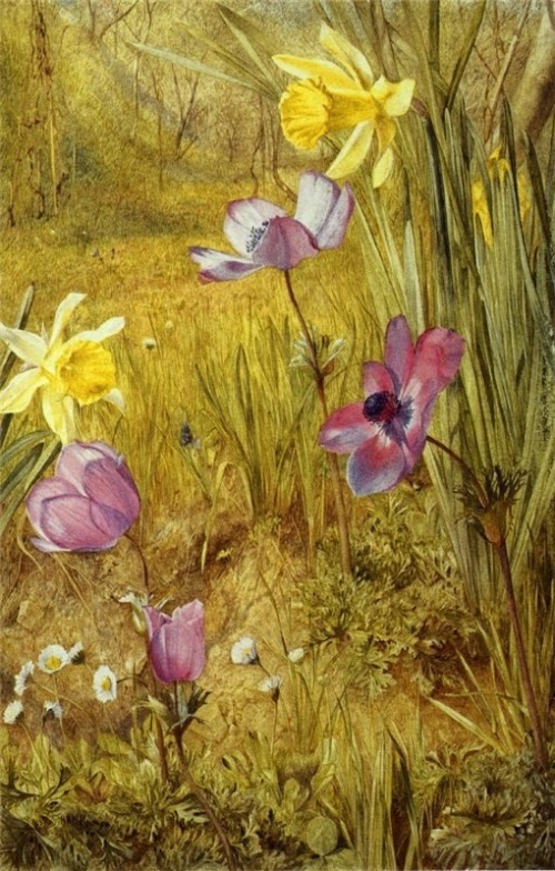 Henry_Roderick_Newman_-_Anemones_and_Daffodils_(15815149940)