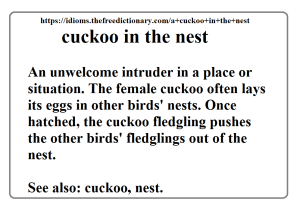 cuckoo_definition_thefreedictionary_lirf