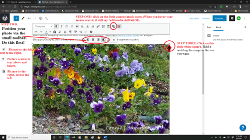 freerange daisies and image toolbar